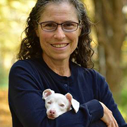 Author photo Melissa Shapiro